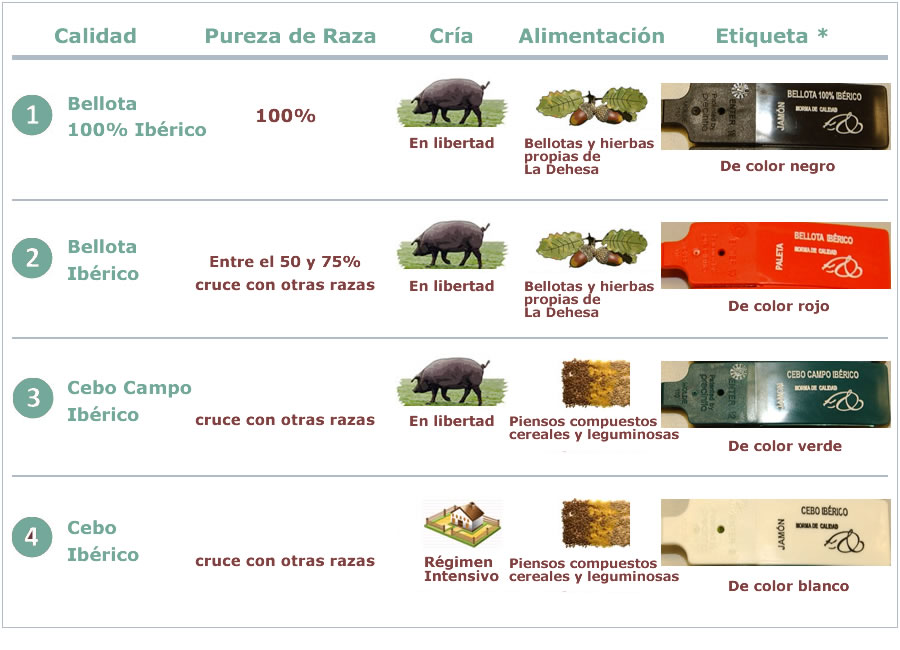 Categoriile de Jamon reglementate in Spania din 2013